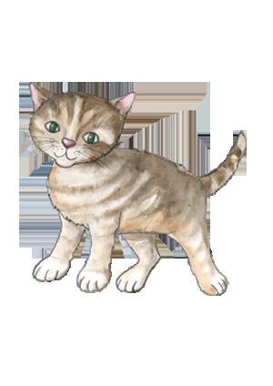 portrét postavičky Koťátka pana Čičinky