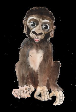portrét postavičky Gorilí mládě Bertík